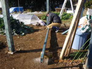 四阿に野菜の保管・乾燥棚を設置