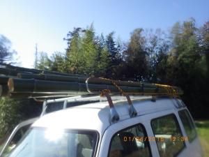 稲架掛け用の竹