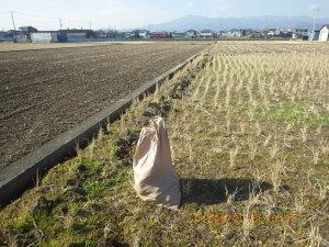 田面を下げる作業