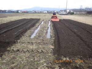 田んぼ、トラクターで耕うん