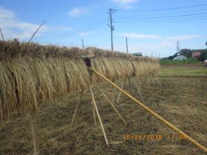 竹製の稲架掛け台