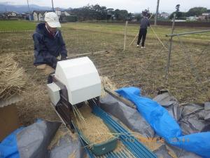 米の脱穀と田んぼの片付け