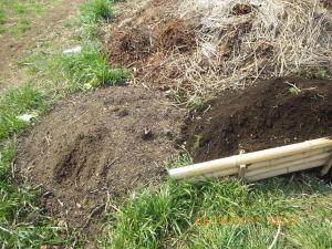 腐葉土と堆肥置き場の土