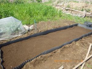畑に作った苗床