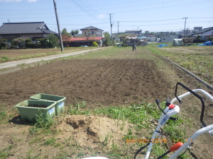 苗床の準備
