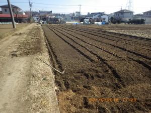 トラクターで耕うんしたばかりの田んぼ