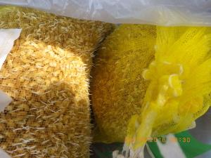 発芽した種籾